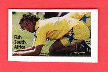 South Africa Mark Fish Bolton Wanderers